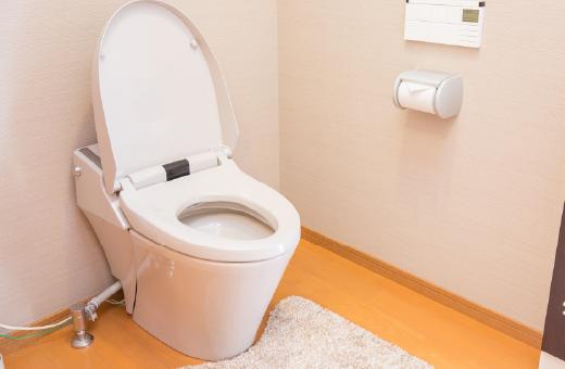 室内・トイレ清掃